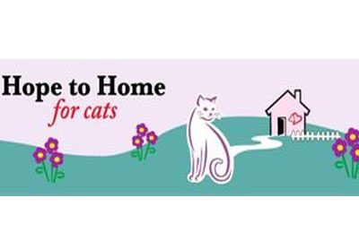 Hope to Home for Cats