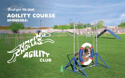 Jumping Chollas Agility Club